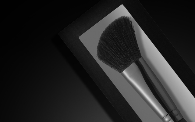 Professional Brushes Product Category